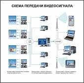 Программное обеспечение Domination Web Server